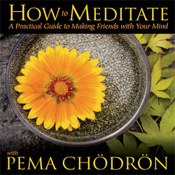 How to Meditate (CD)