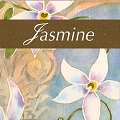 Moodstar Fragrance Oil - Jasmine