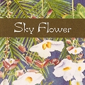 Moodstar Fragrance Oil - Sky Flower