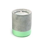 Paddywax Candle - Sea Salt and Sage 3.5oz