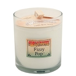 Wild Berry Fizzy Pop Candle - 8oz Glass Candle