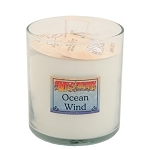 Wild Berry Ocean Wind Candle - 8oz Glass Candle