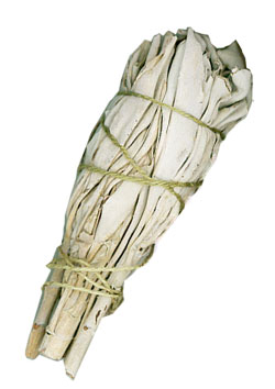 "White Sage Smudge Bundle Mini - 4"" (bulb)"