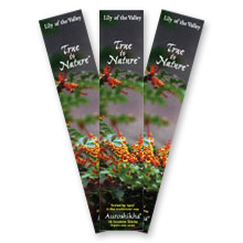 Auroshikha Incense - Lily of the Valley