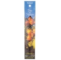Auroshikha Incense - Patchouli