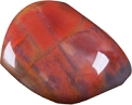 Petrified Wood Tumbled & Polished