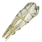 White Sage Smudge Bundle Mini - 4
