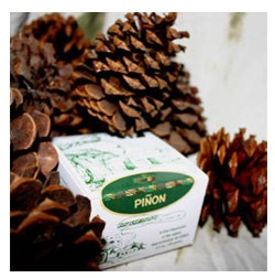 Incienso de Santa Fe - Pinon Incense - 40 Bricks