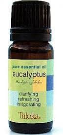 Triloka Pure Essential Oil - Eucalyptus